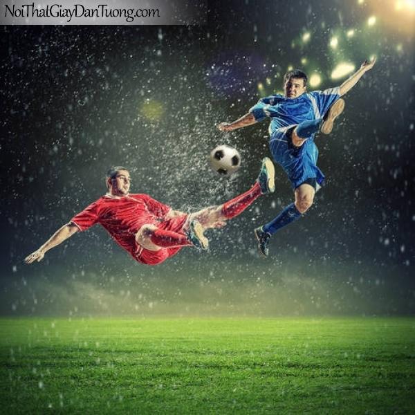 Tranh dán tường , ngắm 2 củ thủ đang tranh bóng dưới trời mưa DA235