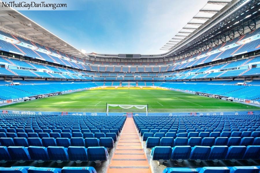 Tranh dán tường , ngắm sân vận động bóng đá DA228