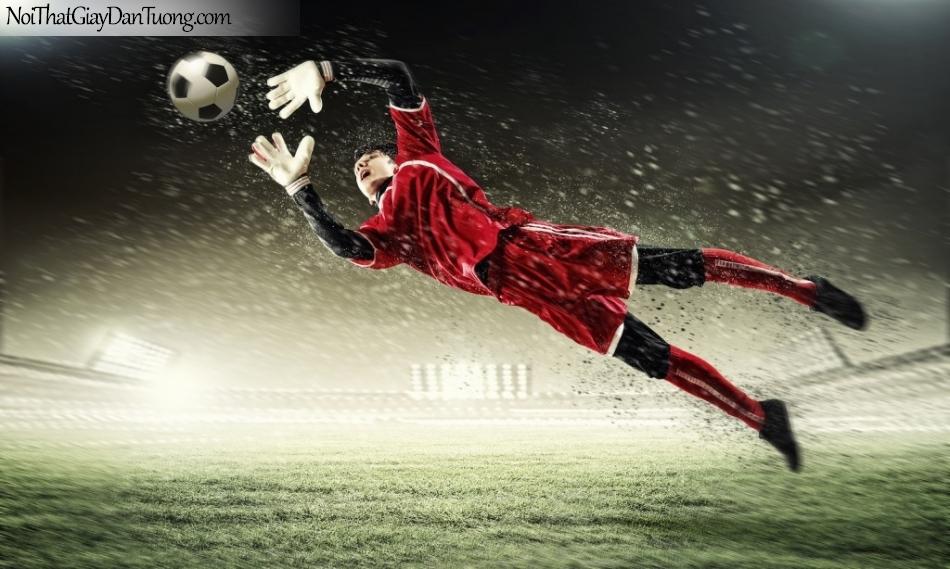 Tranh dán tường , nhìn thủ môn bắt bóng tuyệt đẹp DA227