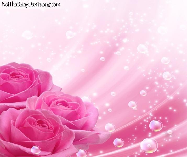 Tranh dán tường | Bức tranh những bông hoa hồng đang khoe sắc cùng với những giọt nước DA2289