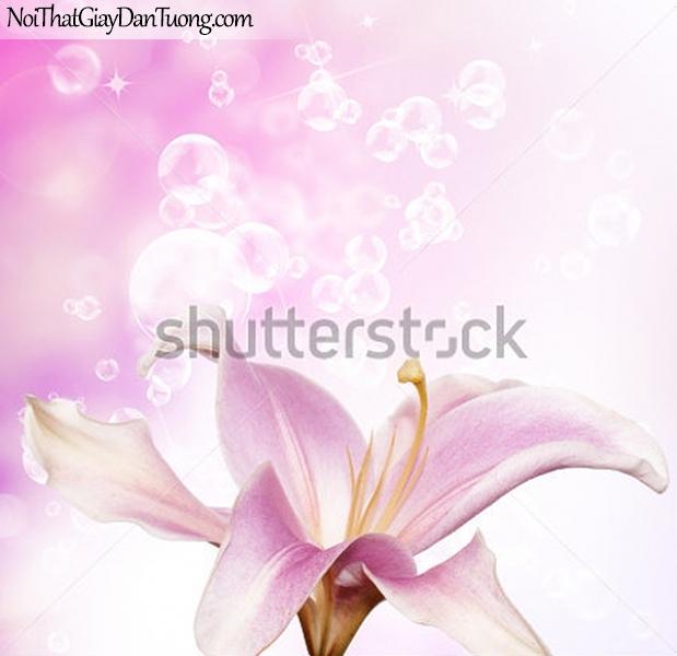 Tranh dán tường | Bức tranh bông hoa lan tuyệt đẹp DA2325