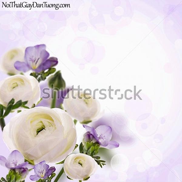 Tranh dán tường | Bức tranh những bông hoa đang khoe sắc DA2297