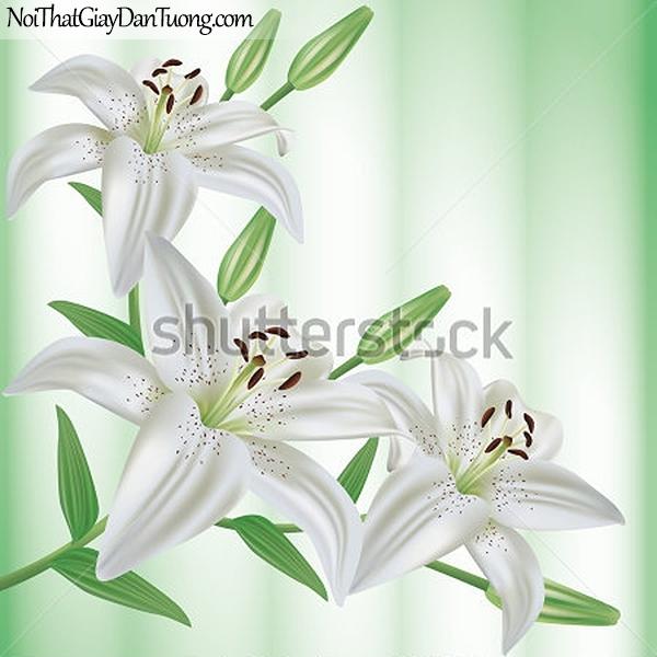 Tranh dán tường | Bức tranh những bông hoa lan đang khoe sắc DA2317