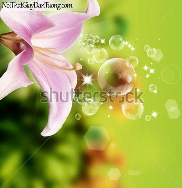 Tranh dán tường | Bức tranh vẻ đẹp tuyệt vời của bông hoa lan DA2324
