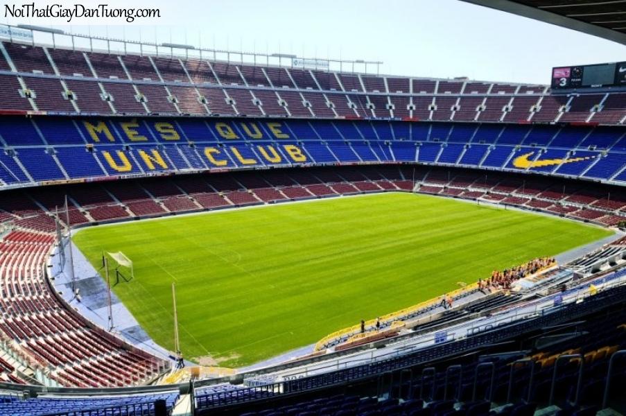 Tranh dán tường , sân vận động tuyệt đẹp 1 màu xanh xanh DA275