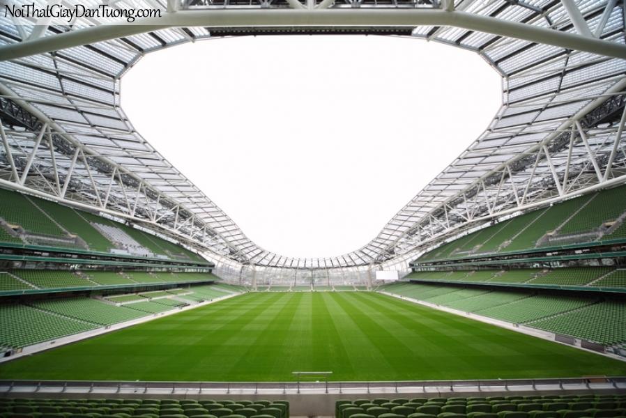 Tranh dán tường , sân vận động tuyệt đẹp nhất hành tinh DA267