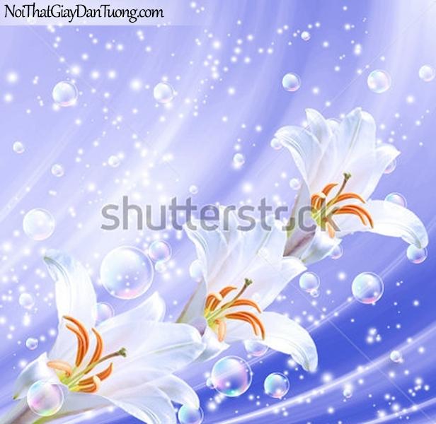 Tranh dán tường | vẻ đẹp của những bông hoa lan với những bong bóng nước DA2292