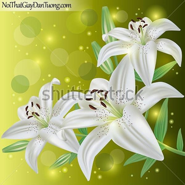 Tranh dán tường | Bức tranh những bông hoa loa kèn trắng tuyệt đẹp DA2368