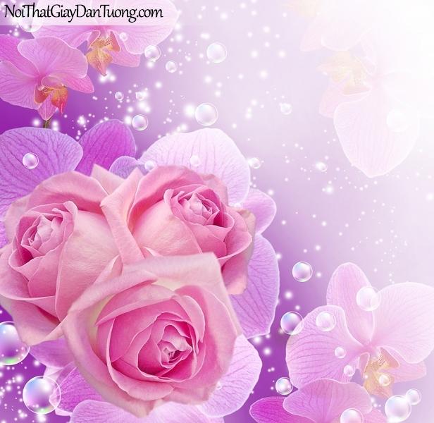 Tranh dán tường phòng ngủ | Bức tranh những bông hoa hồng đang khoe sắc cùng với những bong bóng nước DA2359