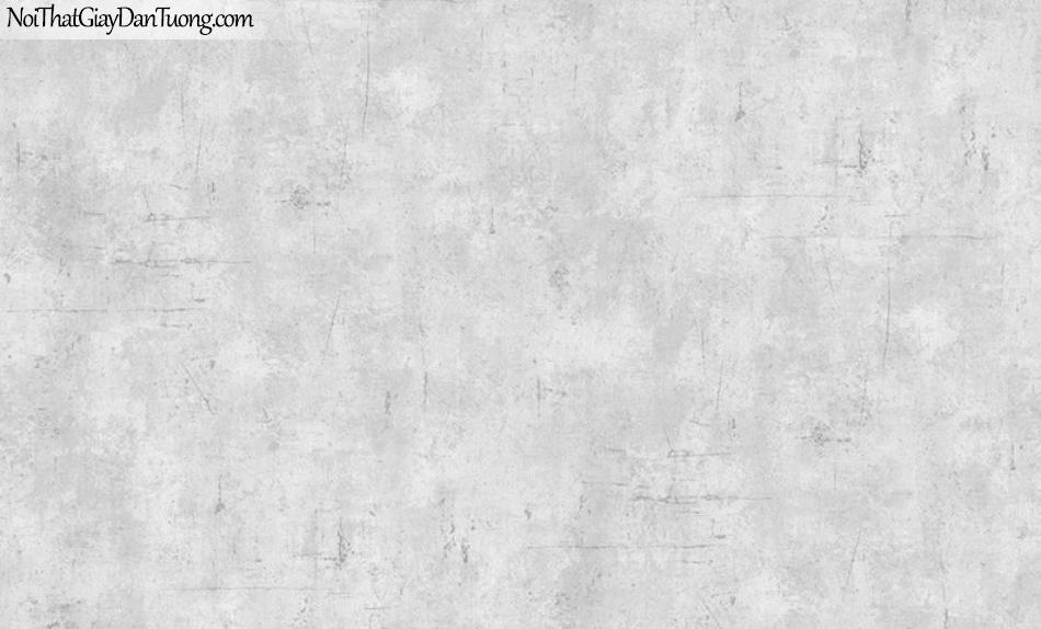 Giấy dán tường The Eight 2126-2 - Giấy dán tường giả bê tông màu xám, giấy bê tông xám tro, màu giấy bê tông