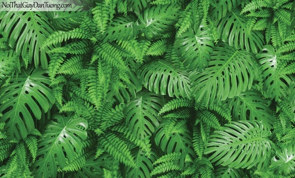 Giấy dán tường Hàn Quốc Hera H6044-1 - giấy dán tường lá cây xanh, màu xanh ngọc, bức trường xanh hoa lá cỏ