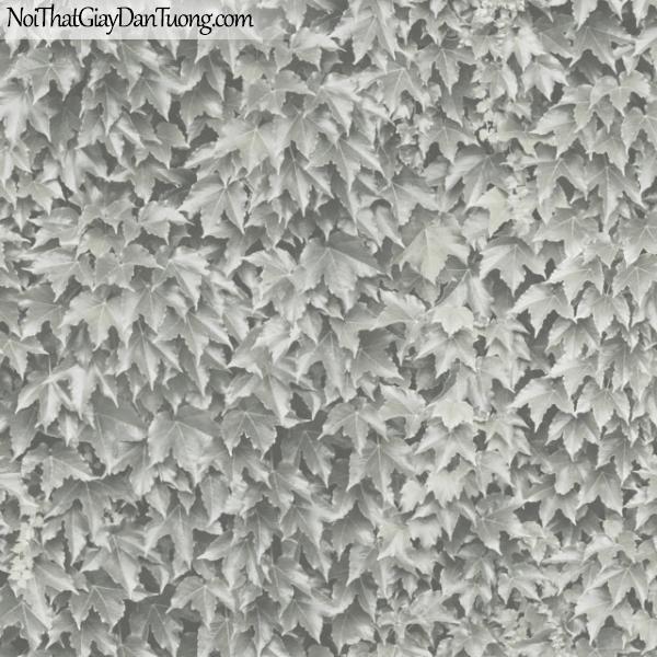 MIDA, Giấy dán tường Hàn Quốc, Giấy dán tường cổ điển M7023-1, giấy dán tường có nhiều chiếc lá màu trắng đen