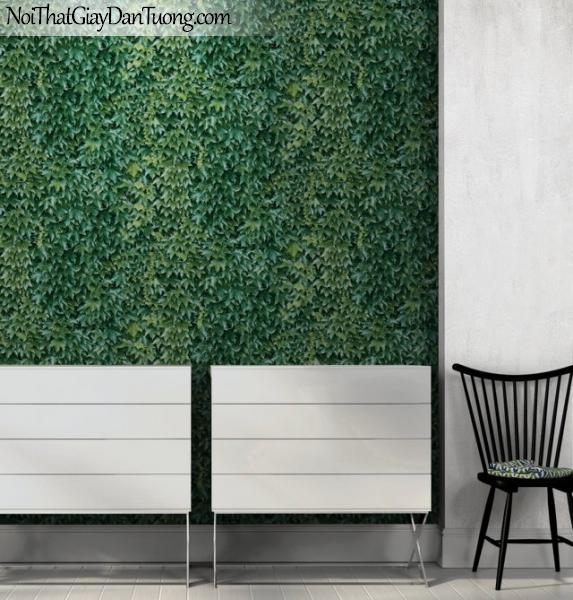 MIDA, Giấy dán tường Hàn Quốc, Giấy dán tường cổ điển M7023-2 pc, giấy dán tường có nhiều lá màu xanh
