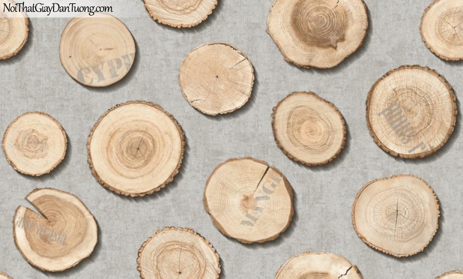 Giấy dán tường giả gỗ, những miếng gỗ trên nền giấy giả gỗ, màu vàng đất, nền xám 2642-2 g