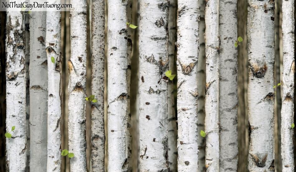Giấy dán tường giả gỗ, những cây lá đứng cạnh nhau, màu trắng, nâu xám 87009-2 g