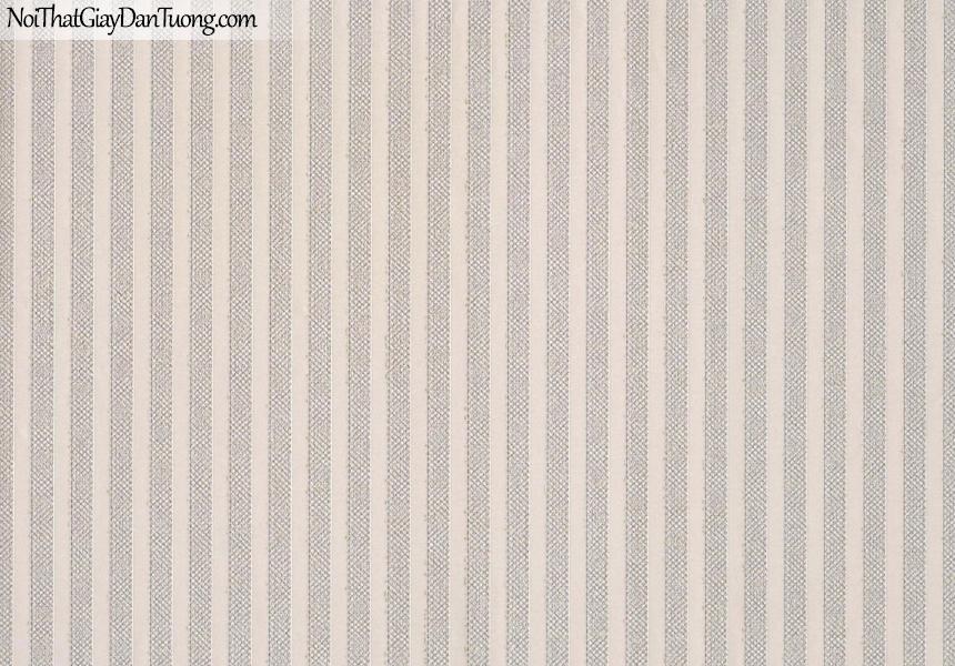 CHAMPANGE, Giấy dán tường CHAMPANGE 2643, Giấy dán tường gân nhỏ li ti, sọc đứng, màu cam hồng, bán giấy dán tường ở quận 5