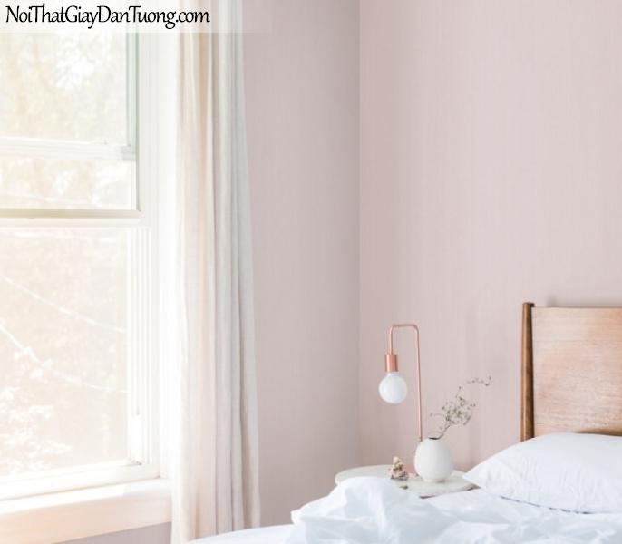 BOS 2018, Giấy dán tường Hàn Quốc 57164-15 PC, giấy dán tường trơn, màu cam hồng, phối cảnh