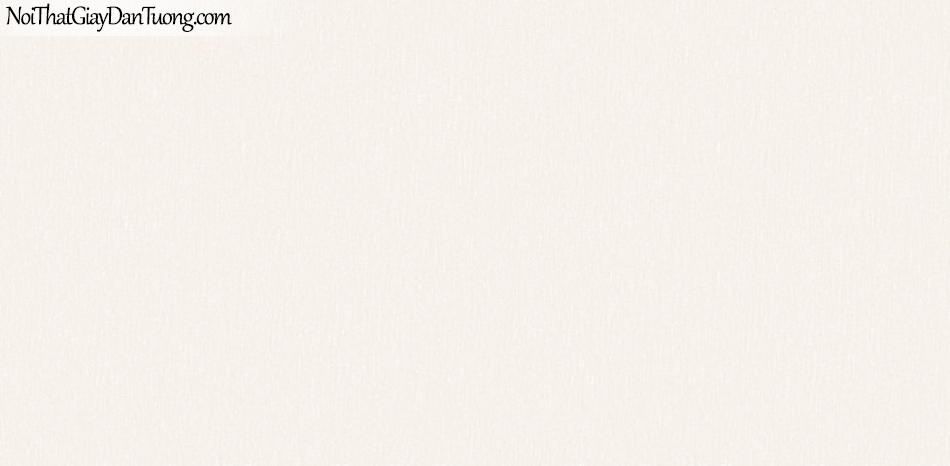 BOS 2018, Giấy dán tường Hàn Quốc 81121-1, giấy dán tường trơn, màu kem hồng