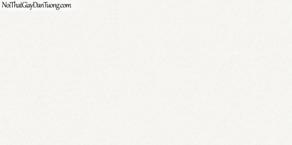 ELYSIA 2018, Giấy dán tường Hàn Quốc 70004-1, giấy dán tường trơn, màu trắng sữa, bán giấy dán tường ở quận 6