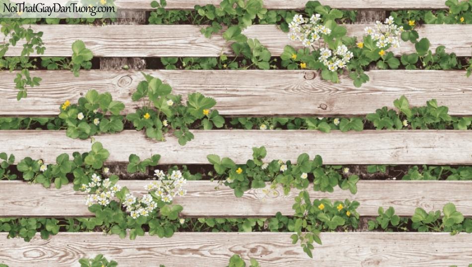Giấy dán tường Natural Hàn Quốc 87020-1, giả gạch, giả đá, giả gỗ 3D, giấy dán tường giả gỗ, màu nâu xám, dây leo, cây, lá