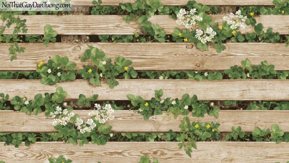 Giấy dán tường Natural Hàn Quốc 87020-2, giả gạch, giả đá, giả gỗ 3D, giấy dán tường giả gỗ, màu vàng cát, dây leo, cây, lá