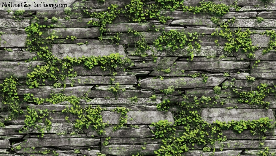 Giấy dán tường Natural Hàn Quốc 87029-1, giả gạch, giả đá, giả gỗ 3D, giấy dán tường giả đá, cây lá, dây leo