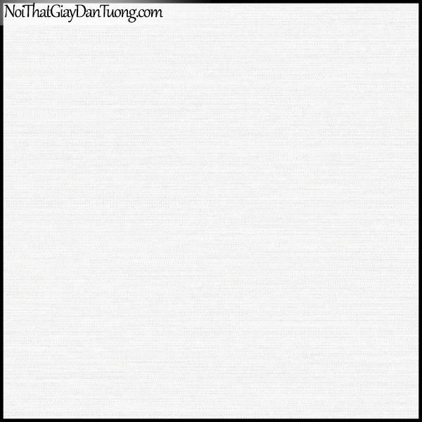 PLENUS, Giấy dán tường Hàn Quốc 2606-1, Giấy dán tường sọc ngang, gân nhỏ li ti, màu trắng sữa