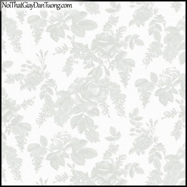 PLENUS, Giấy dán tường Hàn Quốc 2607-1, Giấy dán tường họa tiết hoa văn cổ điển, màu trắng xám
