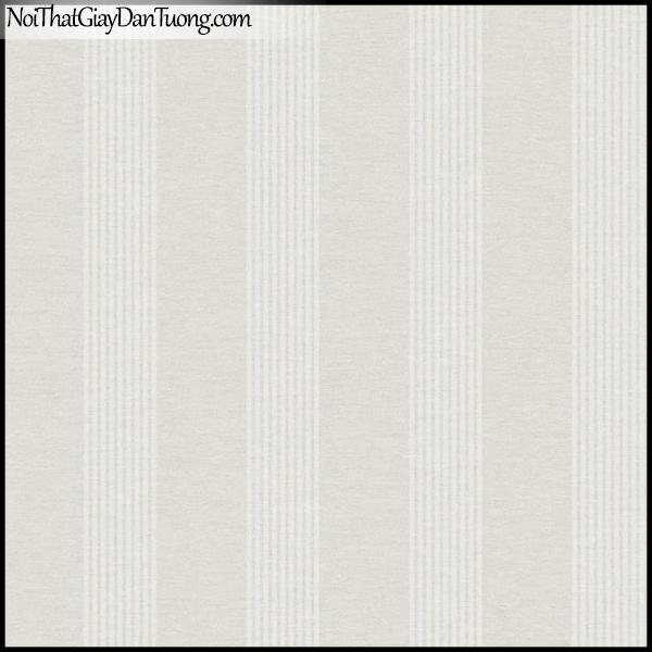 PLENUS, Giấy dán tường Hàn Quốc 2608-3, Giấy dán tường sọc đứng, gân nhỏ, màu nâu xám