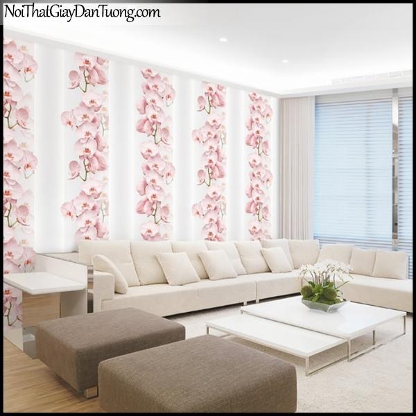 PLENUS, Giấy dán tường Hàn Quốc 2624-2m PC, Giấy dán tường 3D hoa văn, hoa lan hồng đẹp, phối cảnh