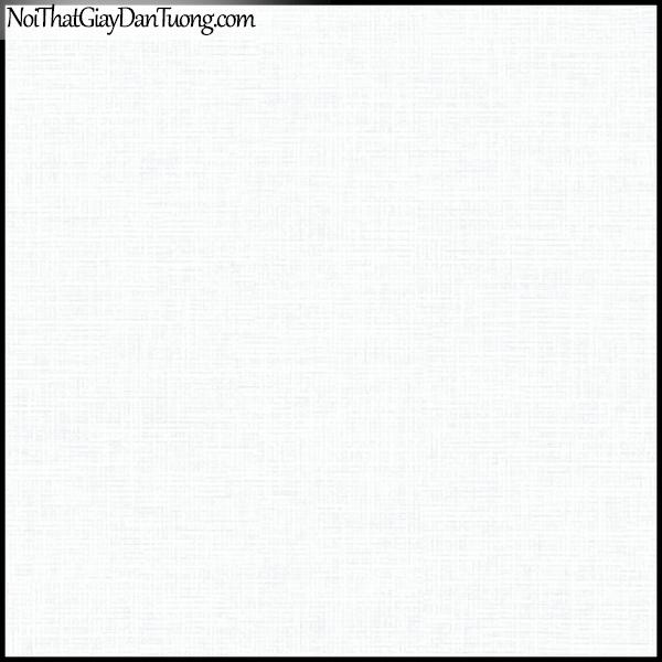 PLENUS, Giấy dán tường Hàn Quốc 2629-1, Giấy dán tường sọc nhỏ, gân li ti, màu trắng xám