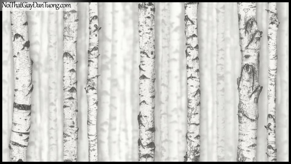 PLACE 3 (III), Giấy dán tường Hàn Quốc 2032-1, Giấy dán tường 3D giả gỗ, giả thân cây khô, màu nâu xám