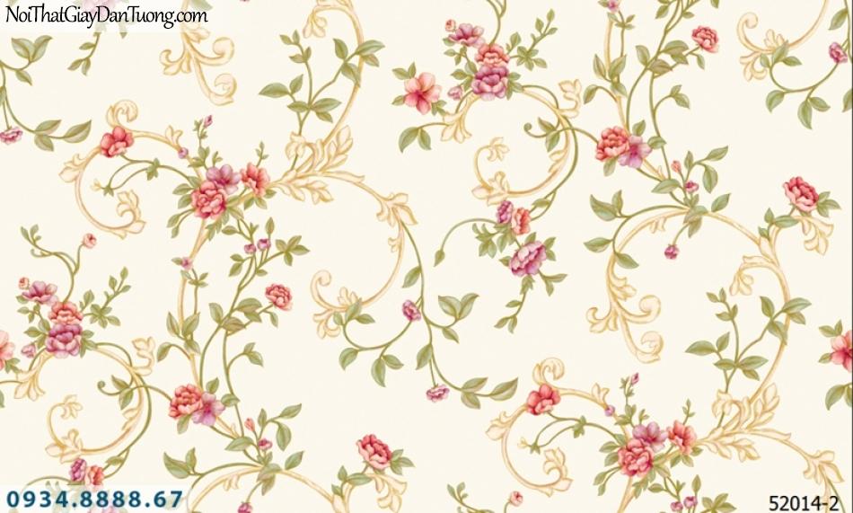 Giấy dán tường NEPTUNE, giấy dán tường nền kem, vàng kem văn hoa dây leo, dây leo có hoa đỏ 52014-2