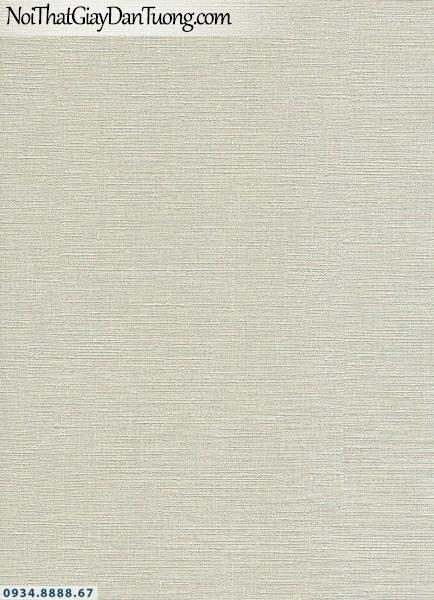 Giấy dán tường AURORA, Giấy dán tường gân nền màu kem, giấy gân nổi, gân ngang 4206-4