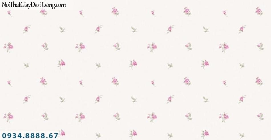 Giấy dán tường AURORA, Giấy dán tường hoa văn bông hoa nhỏ màu hồng, nền màu kem 4205-2