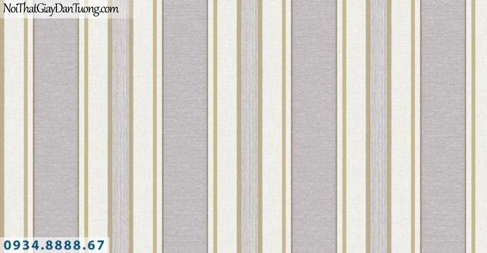 Giấy dán tường AURORA, Giấy dán tường sọc trắng xám, sọc màu nâu, sọc vàng, 3 sọc thẳng, bản to bản nhỏ 4202-4