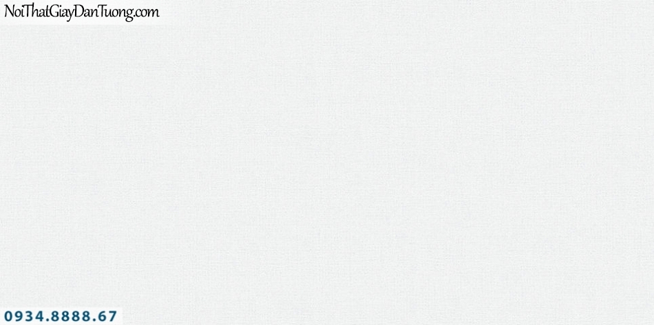 SOHO | Giấy dán tường SOHO 2019 - 2020 | Giấy dán tường gân trơn màu kem, màu trắng 56108-4