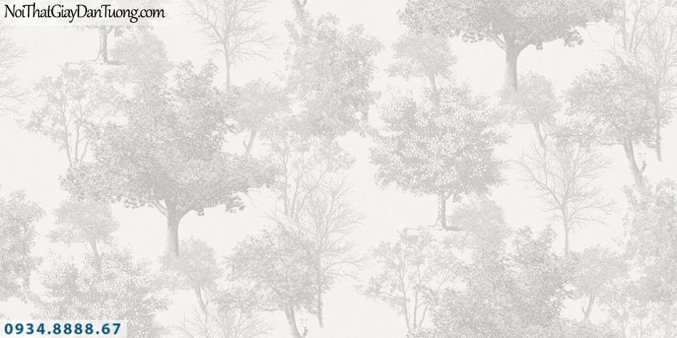 SOHO | Giấy dán tường SOHO 56119-1| giấy dán tường cây, nhiều cây, khu rừng, cây cổ thụ màu xám