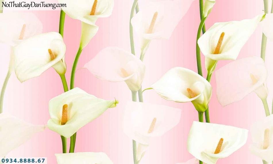 Lily | Giấy dán tường Lily 36013-2 | giấy dán tường hoa loa kèn màu hồng đẹp, giấy hoa 3D, dây hoa leo