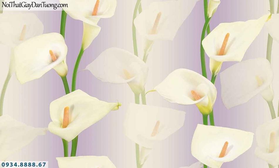Lily | Giấy dán tường Lily 36013-4 | giấy dán tường hoa loa kèn màu tím, hoa lan Ý đẹp, bông hoa dây leo 3D