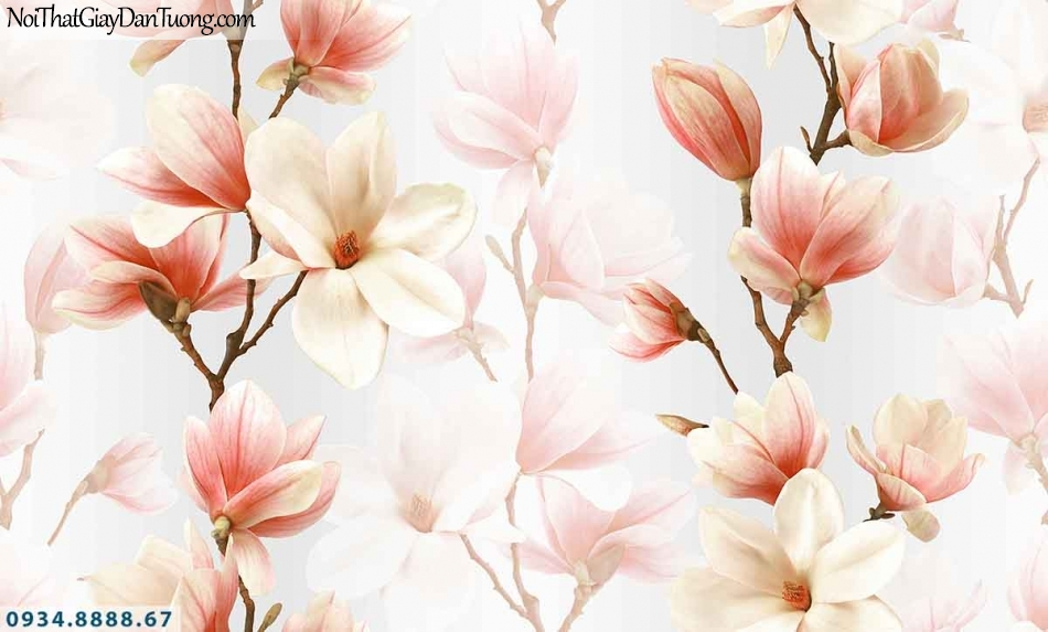 Lily | Giấy dán tường Lily 36014-2 | giấy dán tường hoa mộc lan màu hồng 3d, hoa loa kèn đẹp, cành hoa mọc lan màu hồng trắng