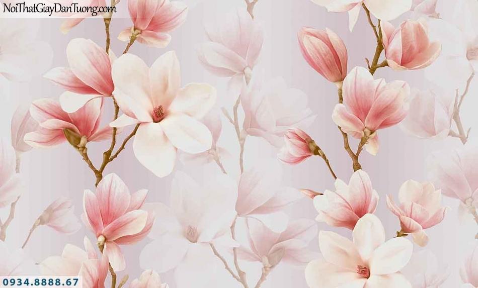 Lily | Giấy dán tường Lily 36014-4 | giấy dán tường hoa mộc lan màu hồng, cành hoa 3D dây dọc theo tường