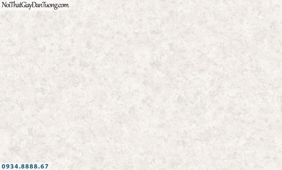 FIESTA | Giấy dán tường giả bê tông màu xám, màu xi măng đẹp | Giấy dán tường Fiesta 23212