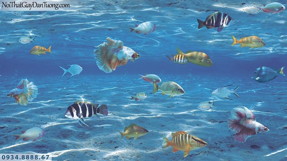 Assemble | Giấy dán tường đáy biển xanh, đàn cá bơi lội, mỗi trường đáy biển | Giấy dán tường Hàn Quốc 40122-1
