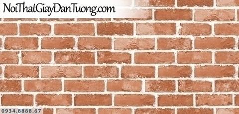 Assemble | Giấy dán tường màu nâu, giấy giả gỗ công nghiệp màu vàng nâu| Giấy dán tường Hàn Quốc 40120-3