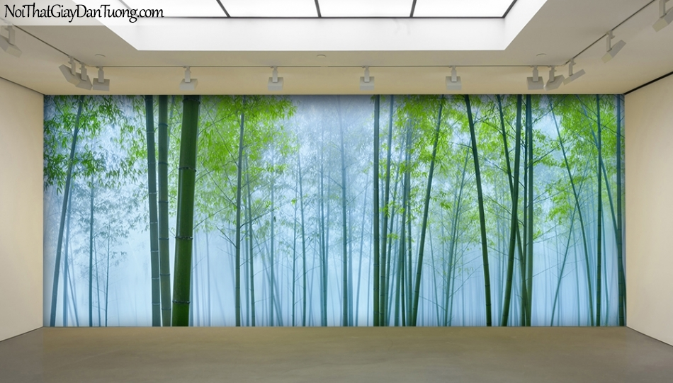 Tranh dán tường hình cây tre, bụi tre, lùm tre, khóm tre, rừng tre 1409
