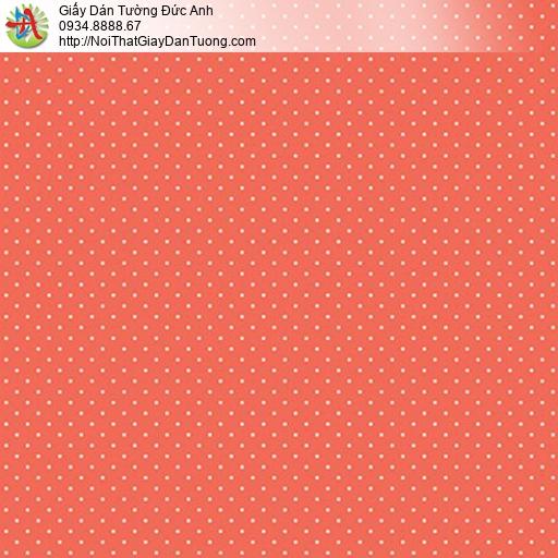 Giấy dán tường Hàn Quốc Plenus III 2684-7