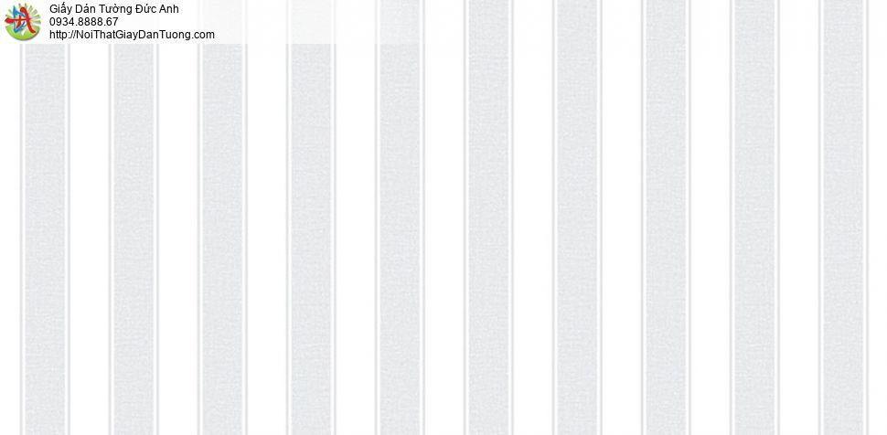 Giấy dán tường Hàn Quốc Plenus III 2690-2
