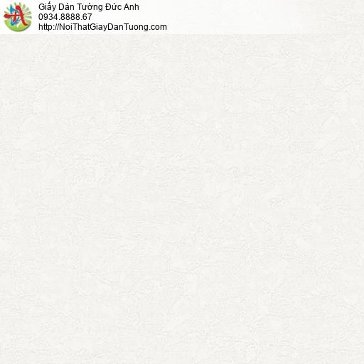 NICE PA2841 | Giấy dán tường Tphcm