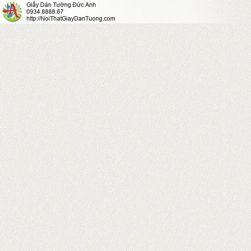 NICE PA28B2 | Giấy dán tường Tphcm